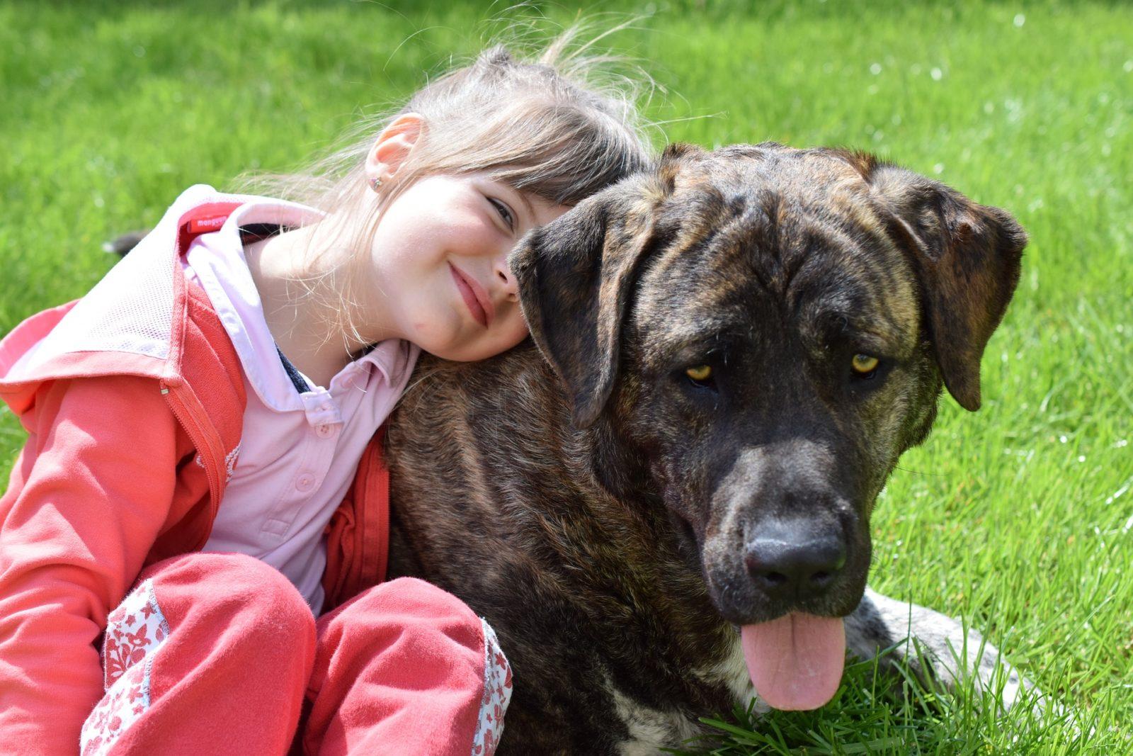 jak nauczyć dziecko właściwego postępowania ze zwierzęciem
